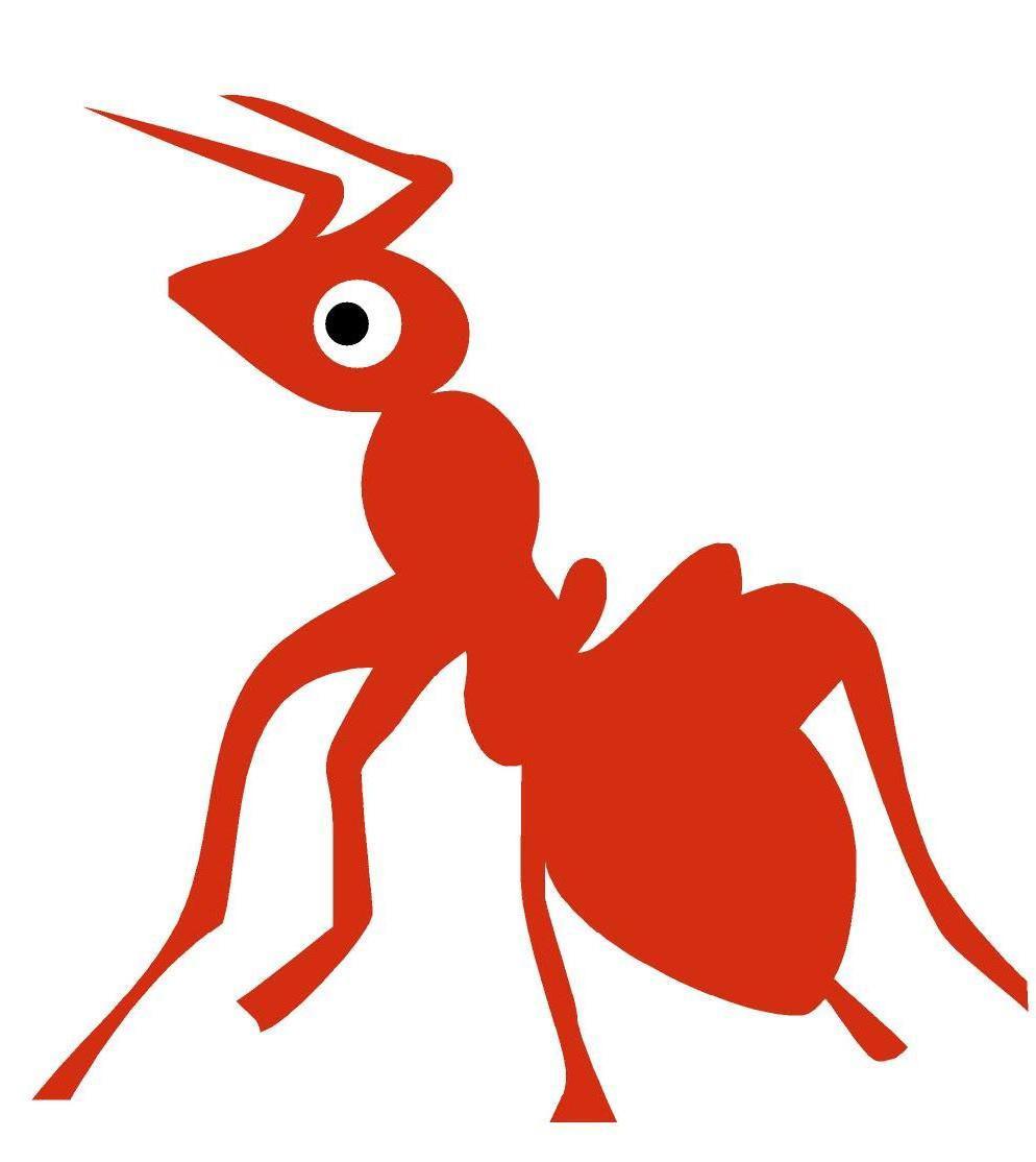 hormiga roja mirando a la izda